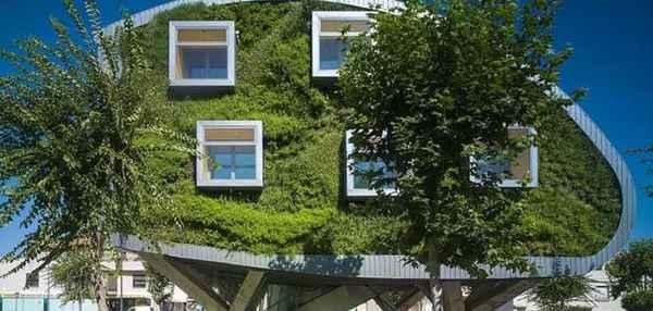 зелёная архитектура