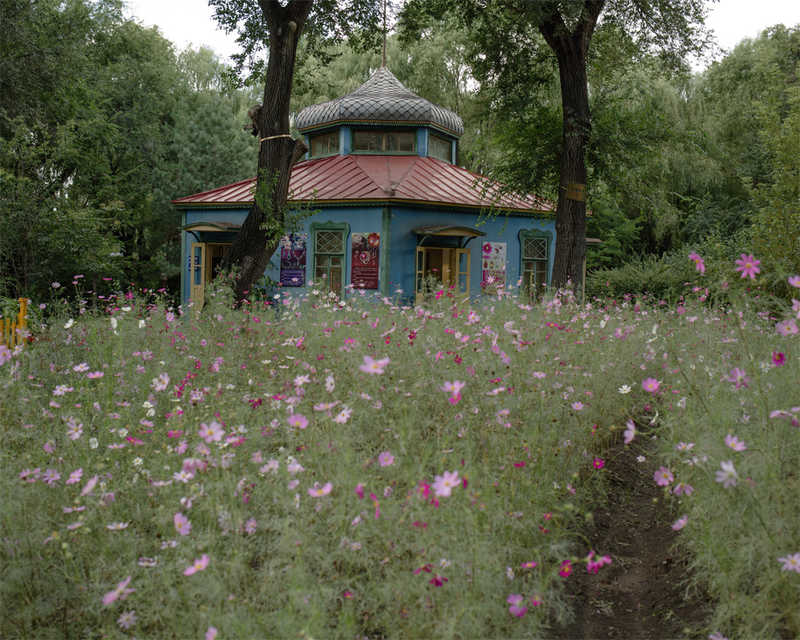 Русский сад: деревянные постройки и ромашки