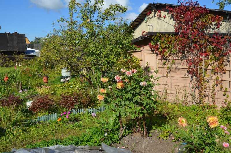 Практичность и очарование русского сада