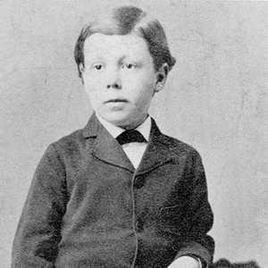 Фрэнк Ллойд Райт архитектор с детства